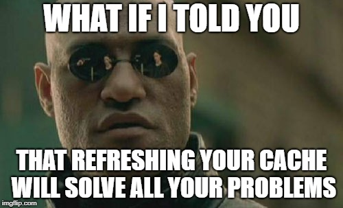 Matrix Morpheus Meme | WHAT IF I TOLD YOU THAT REFRESHING YOUR CACHE WILL SOLVE ALL YOUR PROBLEMS | image tagged in memes,matrix morpheus | made w/ Imgflip meme maker