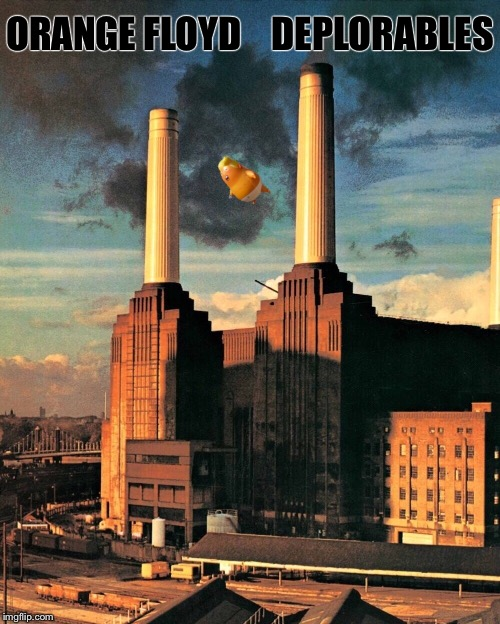 One for Bad Album Art Week, July 29th- August 4th, an Ilikepie3.14159265358979 & KenJ celebration! | ORANGE FLOYD    DEPLORABLES | image tagged in pink floyd,animals,donald trump,balloon,funny memes | made w/ Imgflip meme maker