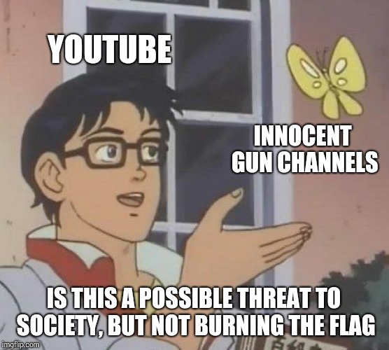 Is This A Pigeon Meme | YOUTUBE INNOCENT GUN CHANNELS IS THIS A POSSIBLE THREAT TO SOCIETY, BUT NOT BURNING THE FLAG | image tagged in memes,is this a pigeon | made w/ Imgflip meme maker