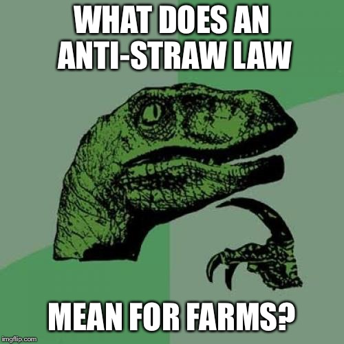 Philosoraptor Meme | WHAT DOES AN ANTI-STRAW LAW MEAN FOR FARMS? | image tagged in memes,philosoraptor | made w/ Imgflip meme maker
