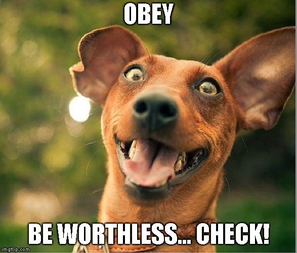 OBEY BE WORTHLESS... CHECK! | made w/ Imgflip meme maker