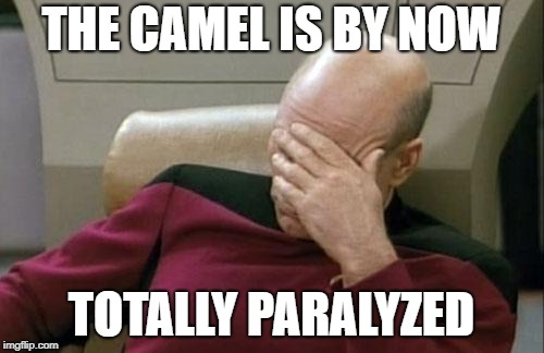 Captain Picard Facepalm Meme | THE CAMEL IS BY NOW TOTALLY PARALYZED | image tagged in memes,captain picard facepalm | made w/ Imgflip meme maker