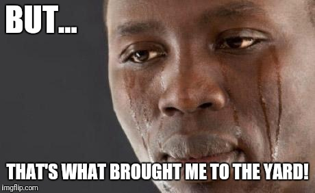 Crying black man | BUT... THAT'S WHAT BROUGHT ME TO THE YARD! | image tagged in crying black man | made w/ Imgflip meme maker