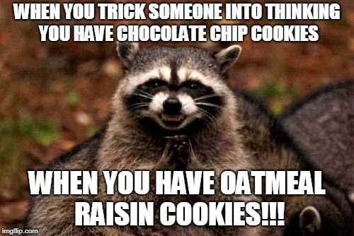 Evil Plotting Raccoon Meme | WHEN YOU TRICK SOMEONE INTO THINKING YOU HAVE CHOCOLATE CHIP COOKIES WHEN YOU HAVE OATMEAL RAISIN COOKIES!!! | image tagged in memes,evil plotting raccoon | made w/ Imgflip meme maker