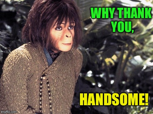 WHY THANK YOU, HANDSOME! | made w/ Imgflip meme maker