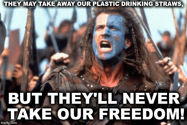They may take away our plastic drinking straws, but they will never take our freedom! | THEY MAY TAKE AWAY OUR PLASTIC DRINKING STRAWS, BUT THEY'LL NEVER TAKE OUR FREEDOM! | image tagged in mel gibson braveheart,plastic drinking straws,straws,freedom,mel gibson,braveheart | made w/ Imgflip meme maker