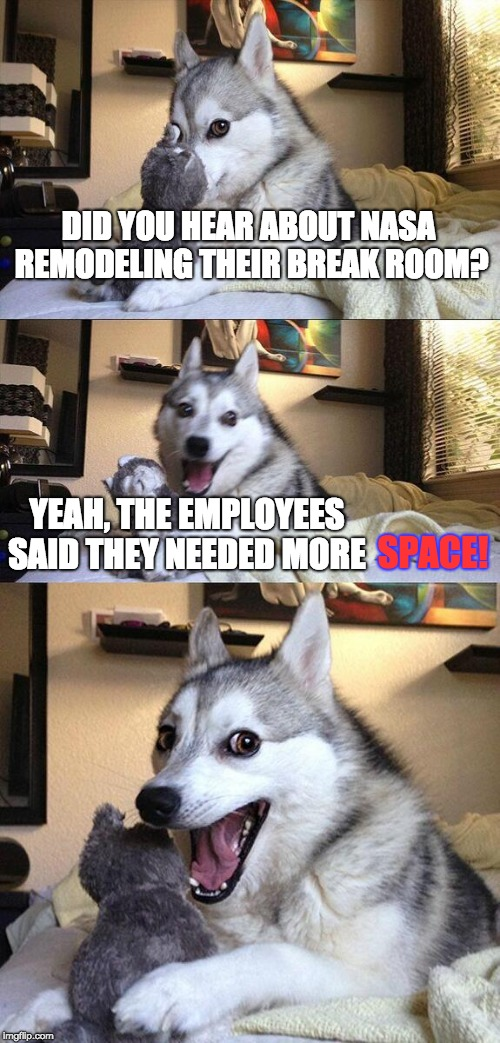 Bad Pun Dog Meme | DID YOU HEAR ABOUT NASA REMODELING THEIR BREAK ROOM? YEAH, THE EMPLOYEES SAID THEY NEEDED MORE SPACE! | image tagged in memes,bad pun dog | made w/ Imgflip meme maker