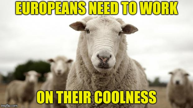 Sheep | EUROPEANS NEED TO WORK ON THEIR COOLNESS | image tagged in sheep | made w/ Imgflip meme maker