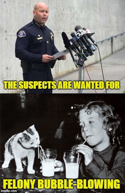 Straw Crime Wave | THE SUSPECTS ARE WANTED FOR FELONY BUBBLE-BLOWING | image tagged in funny memes,straws,cop,cat,girl | made w/ Imgflip meme maker