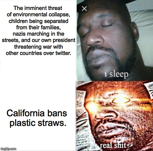Imgflip users have some weird priorities. | The imminent threat of environmental collapse, children being separated from their families, nazis marching in the streets, and our own pres | image tagged in memes,sleeping shaq,california,straws,donald trump,climate change | made w/ Imgflip meme maker