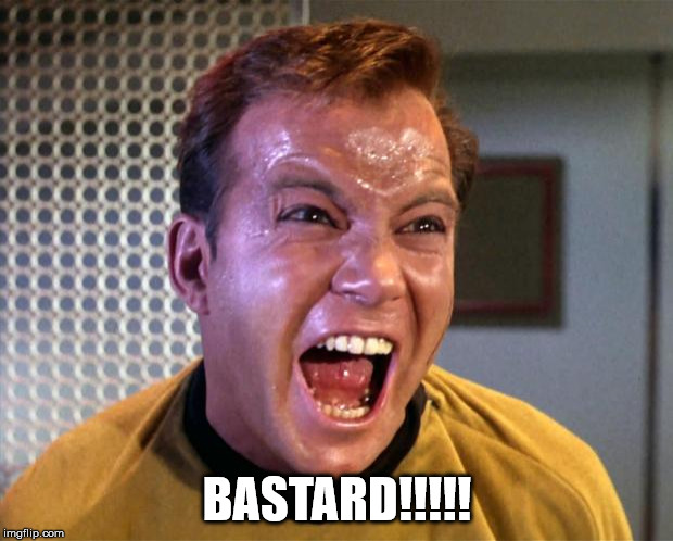 Captain Kirk Screaming | BASTARD!!!!! | image tagged in captain kirk screaming | made w/ Imgflip meme maker