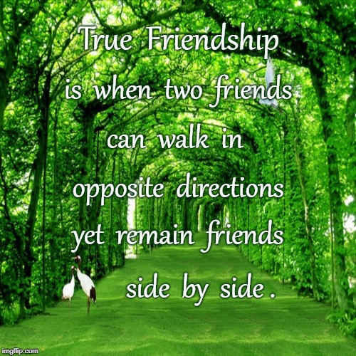 Opposite Yet Beside | True  Friendship side  by  side . is  when  two  friends can  walk  in opposite  directions yet  remain  friends | image tagged in true friendship,opposite directions,side by side | made w/ Imgflip meme maker