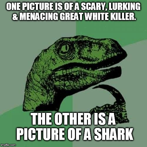 Philosoraptor Meme | ONE PICTURE IS OF A SCARY, LURKING & MENACING GREAT WHITE KILLER. THE OTHER IS A PICTURE OF A SHARK | image tagged in memes,philosoraptor | made w/ Imgflip meme maker
