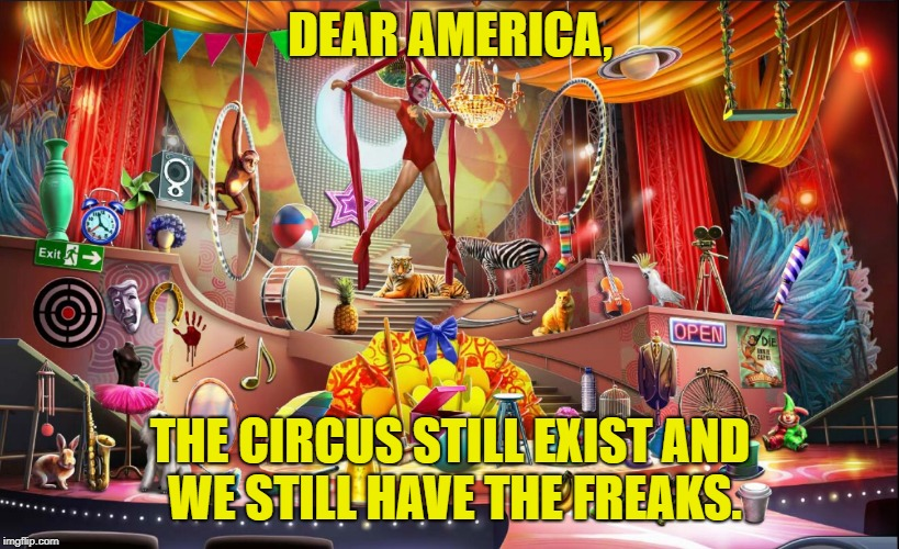 DEAR AMERICA, THE CIRCUS STILL EXIST AND WE STILL HAVE THE FREAKS. | image tagged in circus | made w/ Imgflip meme maker