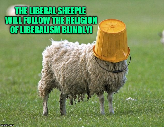stupid sheep | THE LIBERAL SHEEPLE WILL FOLLOW THE RELIGION OF LIBERALISM BLINDLY! | image tagged in stupid sheep | made w/ Imgflip meme maker