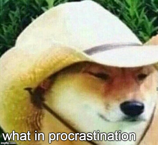 What in tarnation | what in procrastination | image tagged in what in tarnation | made w/ Imgflip meme maker