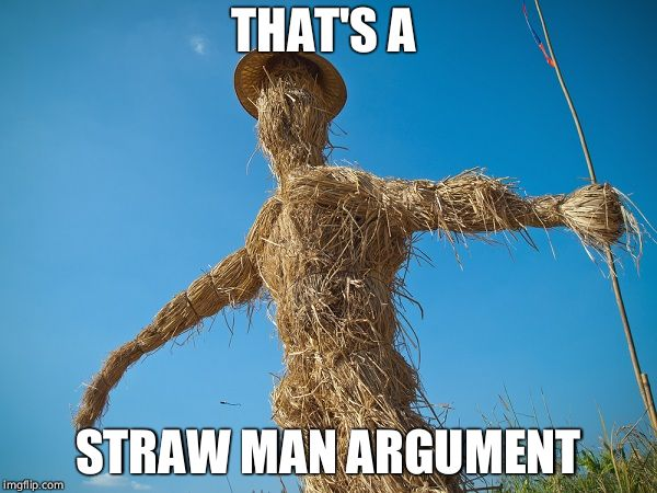 Strawman | THAT'S A STRAW MAN ARGUMENT | image tagged in strawman | made w/ Imgflip meme maker