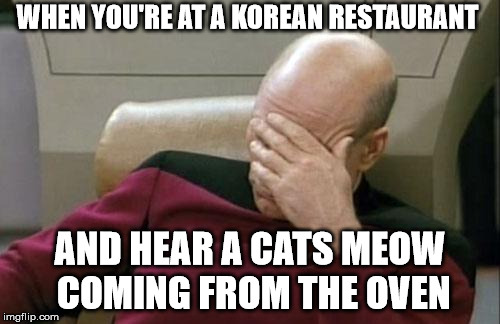 Captain Picard Facepalm Meme | WHEN YOU'RE AT A KOREAN RESTAURANT AND HEAR A CATS MEOW COMING FROM THE OVEN | image tagged in memes,captain picard facepalm | made w/ Imgflip meme maker