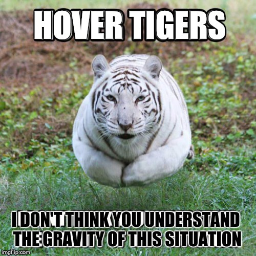 Hover tigers - Tiger Week 2018, July 29 - August 5, a TigerLegend1046 event | H | image tagged in memes,tiger week,tiger week 2018,tigerlegend1046,gravity | made w/ Imgflip meme maker