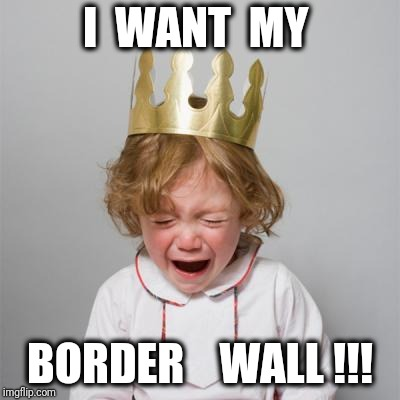 I  WANT  MY BORDER    WALL !!! | image tagged in waaahhhhhh | made w/ Imgflip meme maker