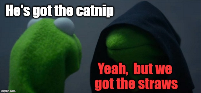 Evil Kermit Meme | He's got the catnip Yeah,  but we got the straws | image tagged in memes,evil kermit | made w/ Imgflip meme maker