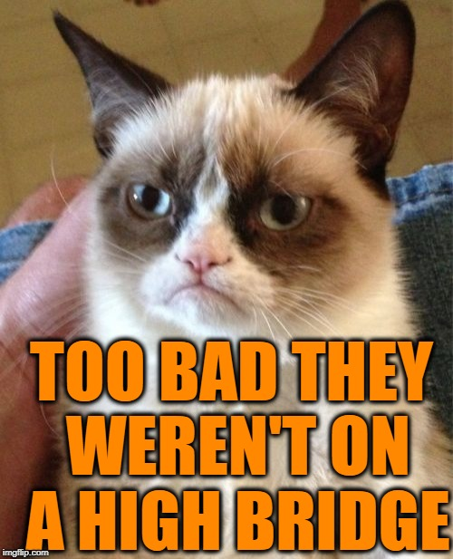 Grumpy Cat Meme | TOO BAD THEY WEREN'T ON A HIGH BRIDGE | image tagged in memes,grumpy cat | made w/ Imgflip meme maker