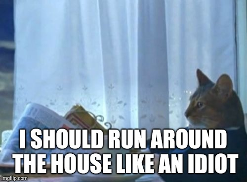 When I'm home alone and there's nothing to do | I SHOULD RUN AROUND THE HOUSE LIKE AN IDIOT | image tagged in memes,i should buy a boat cat | made w/ Imgflip meme maker