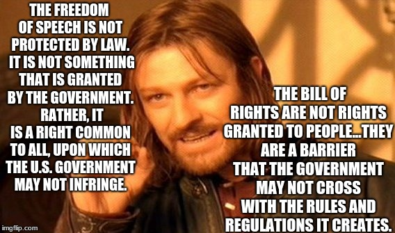 One Does Not Simply Meme | THE FREEDOM OF SPEECH IS NOT PROTECTED BY LAW.  IT IS NOT SOMETHING THAT IS GRANTED BY THE GOVERNMENT.  RATHER, IT IS A RIGHT COMMON TO ALL, | image tagged in memes,one does not simply | made w/ Imgflip meme maker