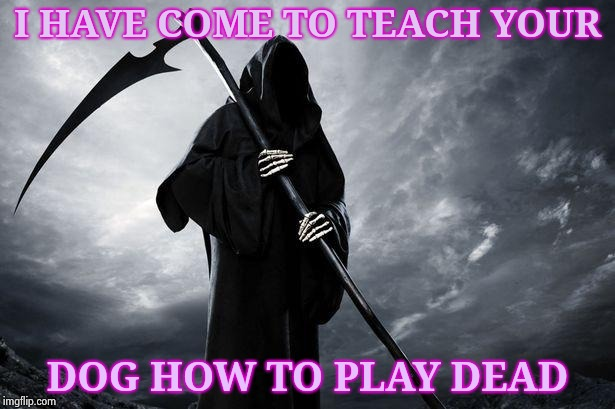 When Rover fails obedience school (I love Dogs , really) |  I HAVE COME TO TEACH YOUR; DOG HOW TO PLAY DEAD | image tagged in death,obey,dog,adventure time,end of the world | made w/ Imgflip meme maker