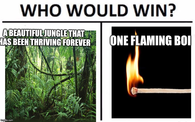 Who Would Win? Meme | A BEAUTIFUL JUNGLE THAT HAS BEEN THRIVING FOREVER ONE FLAMING BOI | image tagged in memes,who would win | made w/ Imgflip meme maker