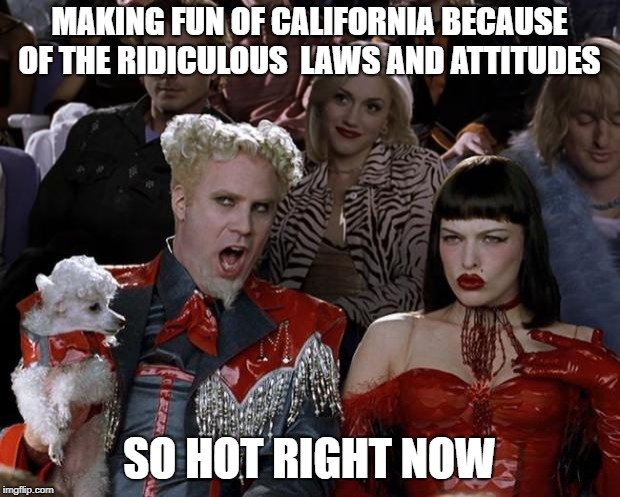 Mugatu So Hot Right Now Meme | MAKING FUN OF CALIFORNIA BECAUSE OF THE RIDICULOUS  LAWS AND ATTITUDES SO HOT RIGHT NOW | image tagged in memes,mugatu so hot right now | made w/ Imgflip meme maker