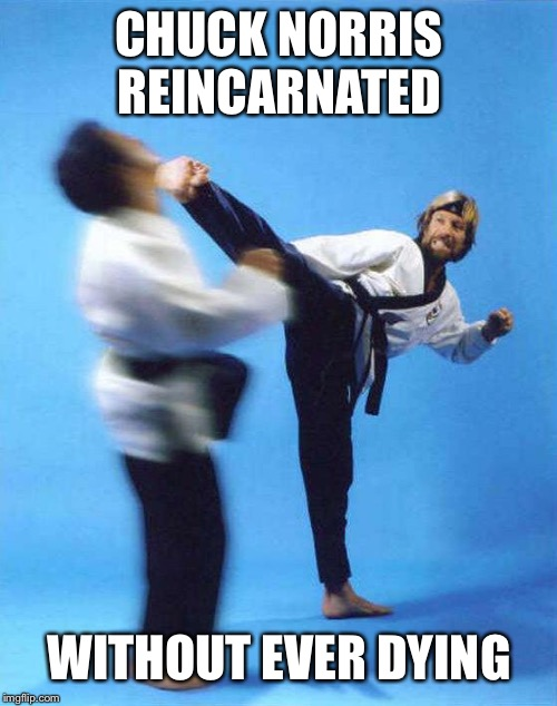 Roundhouse Kick Chuck Norris | CHUCK NORRIS REINCARNATED WITHOUT EVER DYING | image tagged in roundhouse kick chuck norris | made w/ Imgflip meme maker