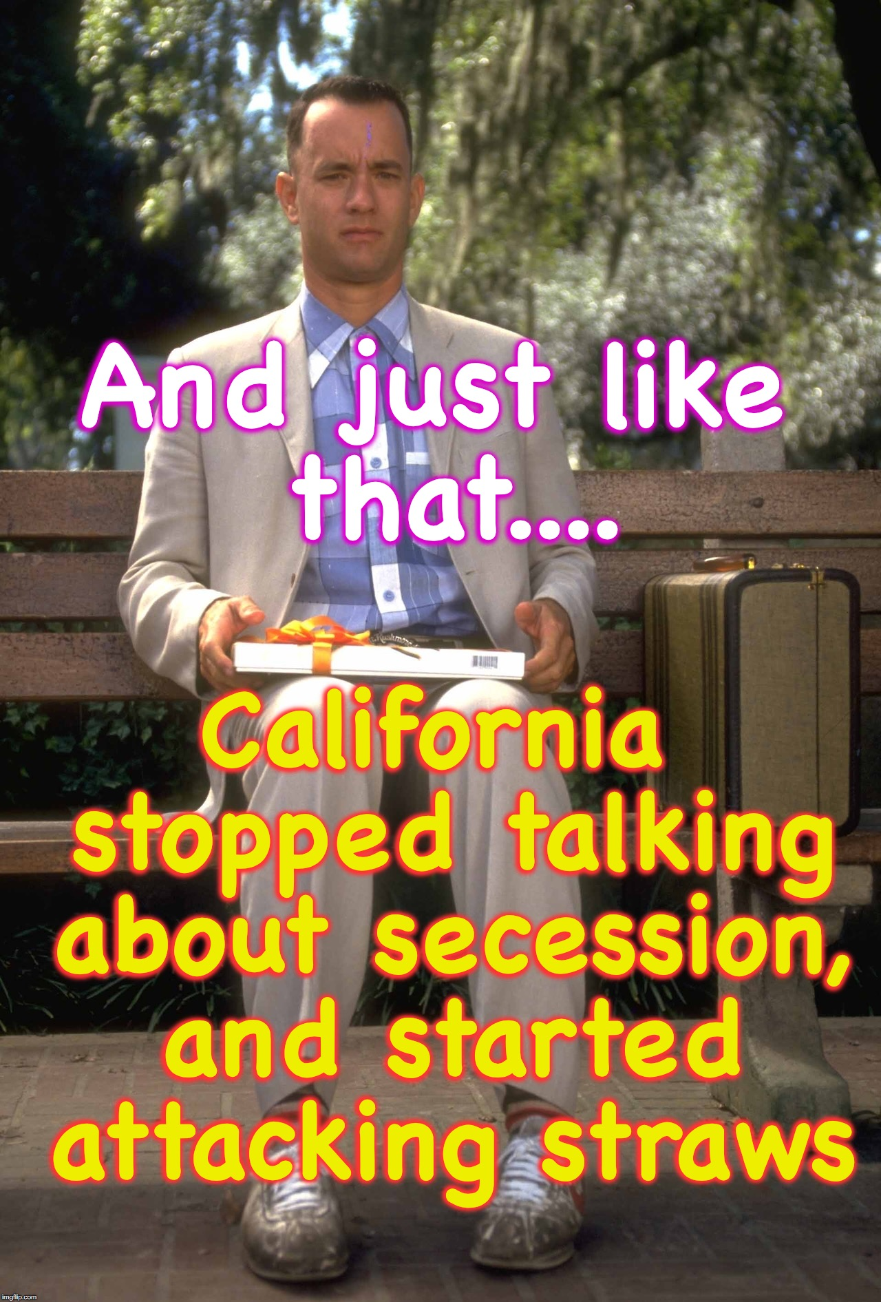 well, they have their 'priorities' I guess | And just like that.... California stopped talking about secession, and started attacking straws | image tagged in plastic straws,secession | made w/ Imgflip meme maker