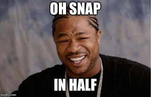Yo Dawg Heard You Meme | OH SNAP IN HALF | image tagged in memes,yo dawg heard you | made w/ Imgflip meme maker