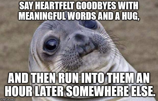 Awkward Moment Sealion Meme | SAY HEARTFELT GOODBYES WITH MEANINGFUL WORDS AND A HUG, AND THEN RUN INTO THEM AN HOUR LATER SOMEWHERE ELSE. | image tagged in memes,awkward moment sealion | made w/ Imgflip meme maker