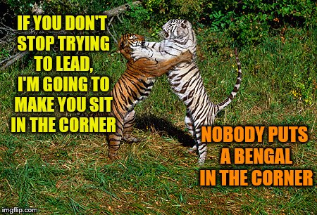 Dirty Tiger Dancing (Tiger Week Jul 29 - Aug 5, A TigerLegend1046 event) |  IF YOU DON'T STOP TRYING TO LEAD, I'M GOING TO MAKE YOU SIT IN THE CORNER; NOBODY PUTS A BENGAL IN THE CORNER | image tagged in memes,tiger week,tiger week 2018,dirty dancing,tigerlegend1046 | made w/ Imgflip meme maker