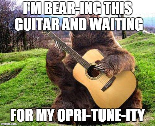 bear with guitar  | I'M BEAR-ING THIS GUITAR AND WAITING FOR MY OPRI-TUNE-ITY | image tagged in bear with guitar | made w/ Imgflip meme maker