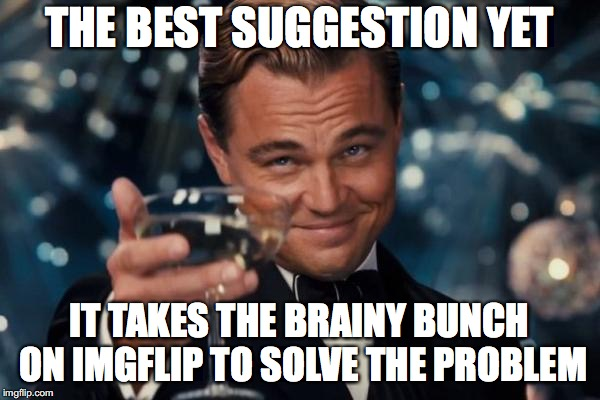 Leonardo Dicaprio Cheers Meme | THE BEST SUGGESTION YET IT TAKES THE BRAINY BUNCH ON IMGFLIP TO SOLVE THE PROBLEM | image tagged in memes,leonardo dicaprio cheers | made w/ Imgflip meme maker