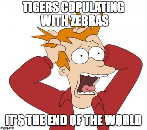 Panic | TIGERS COPULATING WITH ZEBRAS IT'S THE END OF THE WORLD | image tagged in panic | made w/ Imgflip meme maker