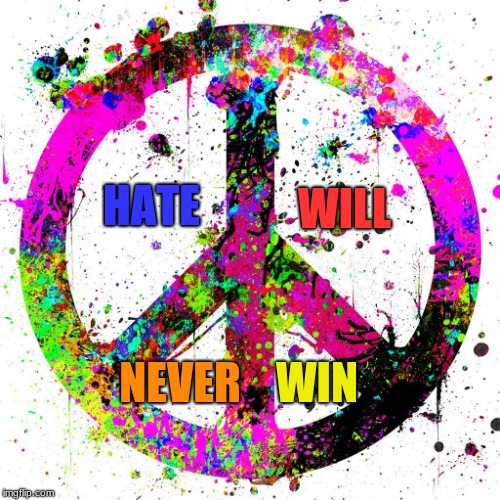 Peace | HATE WILL NEVER WIN | image tagged in peace | made w/ Imgflip meme maker