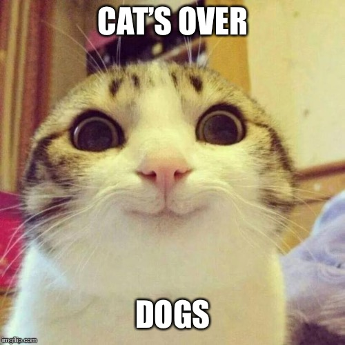 Smiling Cat Meme | CAT'S OVER DOGS | image tagged in memes,smiling cat | made w/ Imgflip meme maker