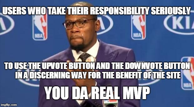 Thanks to DubD77 for inspiring this meme. There's more to meme life than getting upvotes, people! | USERS WHO TAKE THEIR RESPONSIBILITY SERIOUSLY YOU DA REAL MVP TO USE THE UPVOTE BUTTON AND THE DOWNVOTE BUTTON IN A DISCERNING WAY FOR THE B | image tagged in memes,you the real mvp,imgflip,upvotes,downvotes are good when used right,improve imgflip together | made w/ Imgflip meme maker