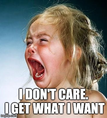 Tempertantrum | I DON'T CARE. I GET WHAT I WANT | image tagged in tempertantrum | made w/ Imgflip meme maker