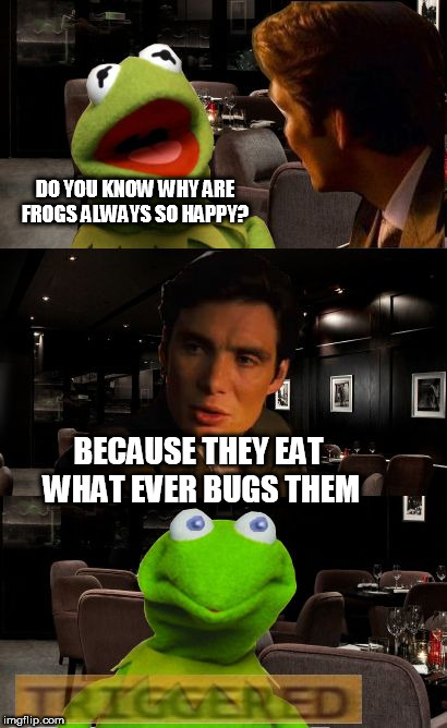 Kermit Triggered | DO YOU KNOW WHY ARE FROGS ALWAYS SO HAPPY? BECAUSE THEY EAT WHAT EVER BUGS THEM | image tagged in kermit triggered | made w/ Imgflip meme maker