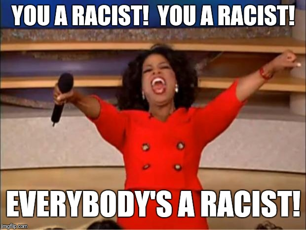 Oprah You Get A Meme | YOU A RACIST!  YOU A RACIST! EVERYBODY'S A RACIST! | image tagged in memes,oprah you get a | made w/ Imgflip meme maker