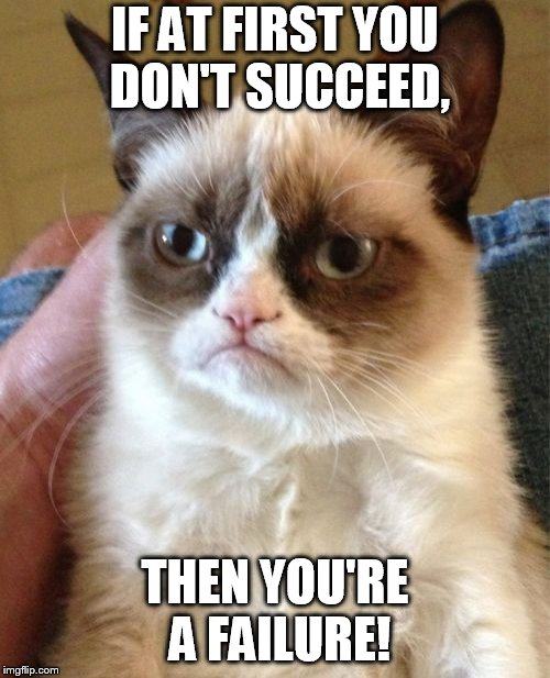 Grumpy Cat Meme | IF AT FIRST YOU DON'T SUCCEED, THEN YOU'RE A FAILURE! | image tagged in memes,grumpy cat | made w/ Imgflip meme maker