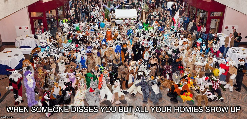 Mess wuth one furry, mess with em all | WHEN SOMEONE DISSES YOU BUT ALL YOUR HOMIES SHOW UP | image tagged in cause furries are cool,memes,furry | made w/ Imgflip meme maker