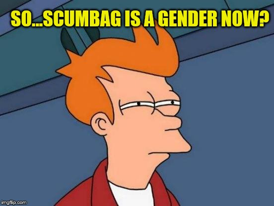 Futurama Fry Meme | SO...SCUMBAG IS A GENDER NOW? | image tagged in memes,futurama fry | made w/ Imgflip meme maker