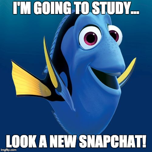 Dory | I'M GOING TO STUDY... LOOK A NEW SNAPCHAT! | image tagged in dory | made w/ Imgflip meme maker