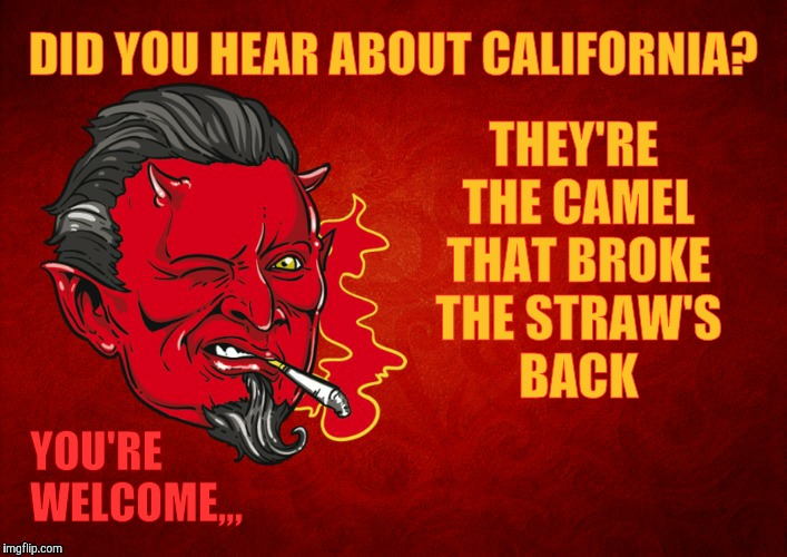 California sucks, dude, but not on straws,,, | DID YOU HEAR ABOUT CALIFORNIA? YOU'RE WELCOME,,, THEY'RE THE CAMEL THAT BROKE THE STRAW'S BACK | image tagged in memes,the straw crisis of 2018,straw lives matter,california's last straw,straws,the devil's seal of approval   | made w/ Imgflip meme maker